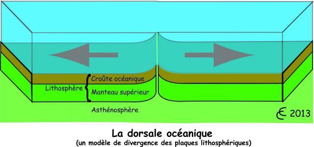 dorsale-oceanique.jpg